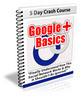 Thumbnail Google Plus Basics With PLR!