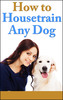 Thumbnail How To Housetrain Any Dog